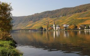 Vineyards of Mosel Valley Germany