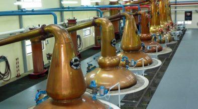 Distillation Process for Spirits